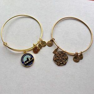 Alex and Ani Disney Lion King Bangle Bracelet